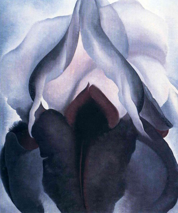 iris-negro-georgia-o-keeffe